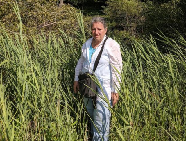 Gabriella Velardi-Ward is part of a group of Staten Islanders fighting to save 18 acres of wetlands in Staten Island's Graniteville neighborhood